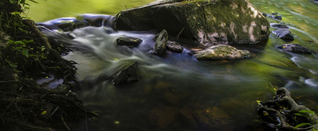 Eno River Anniversary Photography Excursion