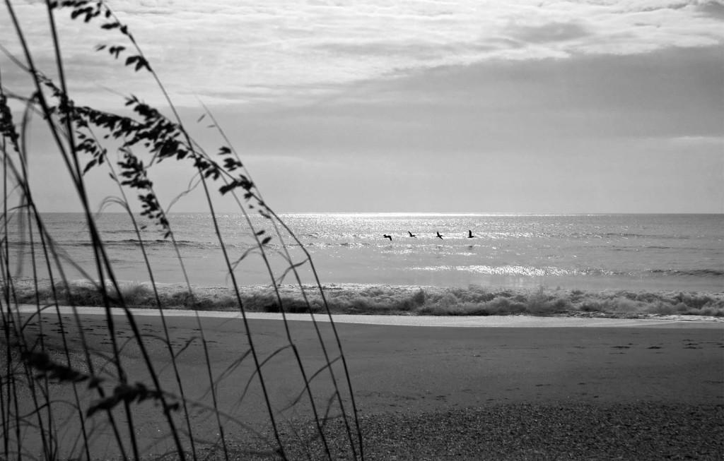 Ahhh… The Ocean
