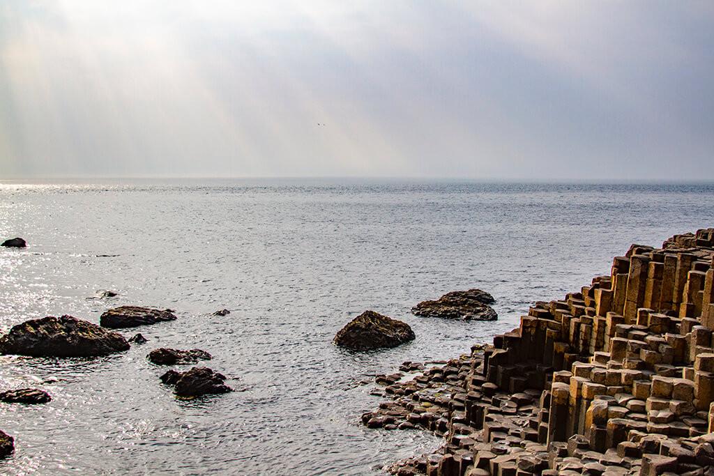 Giant's Causeway: Rays